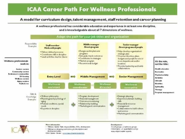 career path infographic